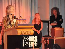 Guest appearance: Brian May live at the The Savoy, London, UK (Born Free Foundation Gala Dinner)